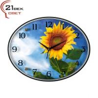 Часы  овальной формы