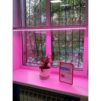 Светильник светодиодный  СПБ-Т8-ФИТО 8Вт 600мм для роста растений